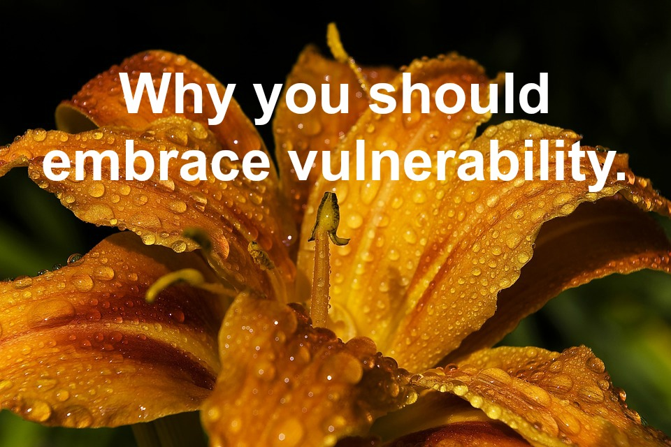 Why you should embrace vulnerability.